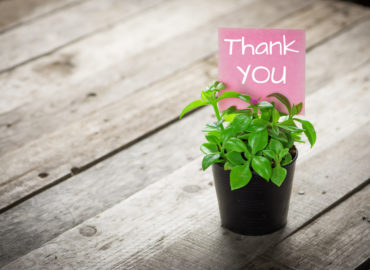 a small plant with a thank you note